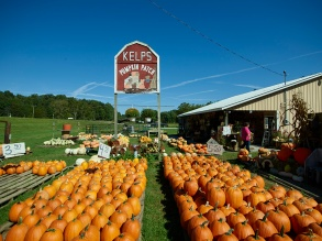 An array of pumpkins, ready for the autumn customer rush at the Kelp's Pumpkin Patch stand near Nashville in Brown County, Indiana. Photo by Carol M. Highsmith Photography, Inc., courtesy Library of Congress Prints and Photographs Division: http://www.loc.gov/pictures/item/2016631899/